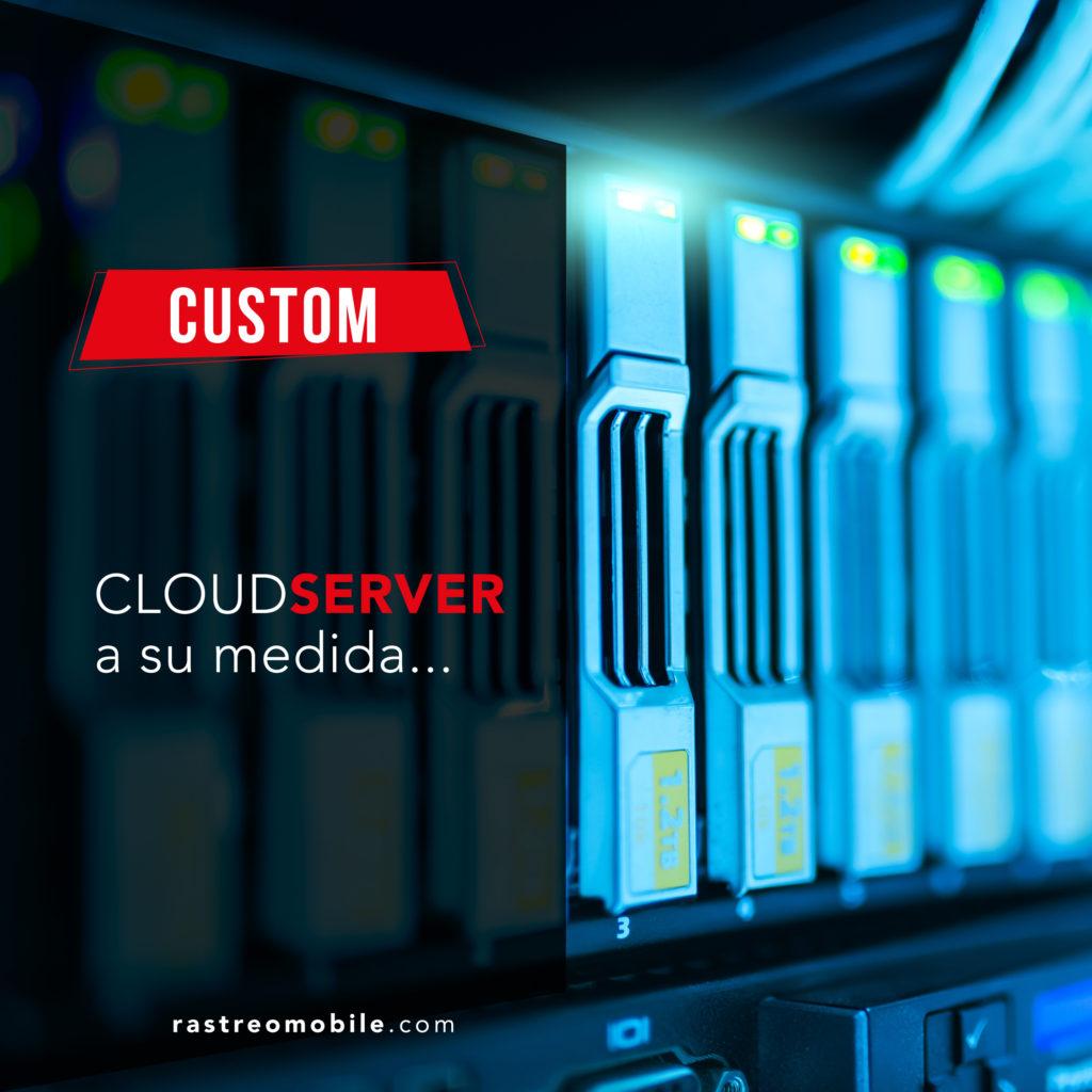 """Customice su servidor segun sus necesidades con la opcion """"custom""""."""